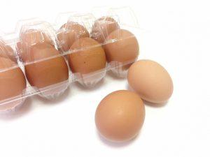 パック入りの卵